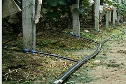 大棚灌溉管道